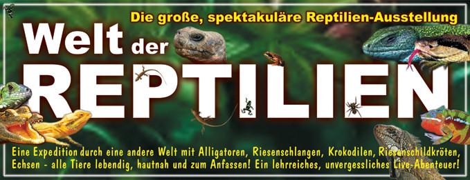 welt der reptilien